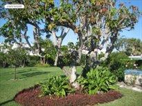 1581 North Ocean Blvd., Palm Beach