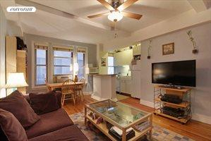 325 West 45th Street, Apt. 305, Clinton