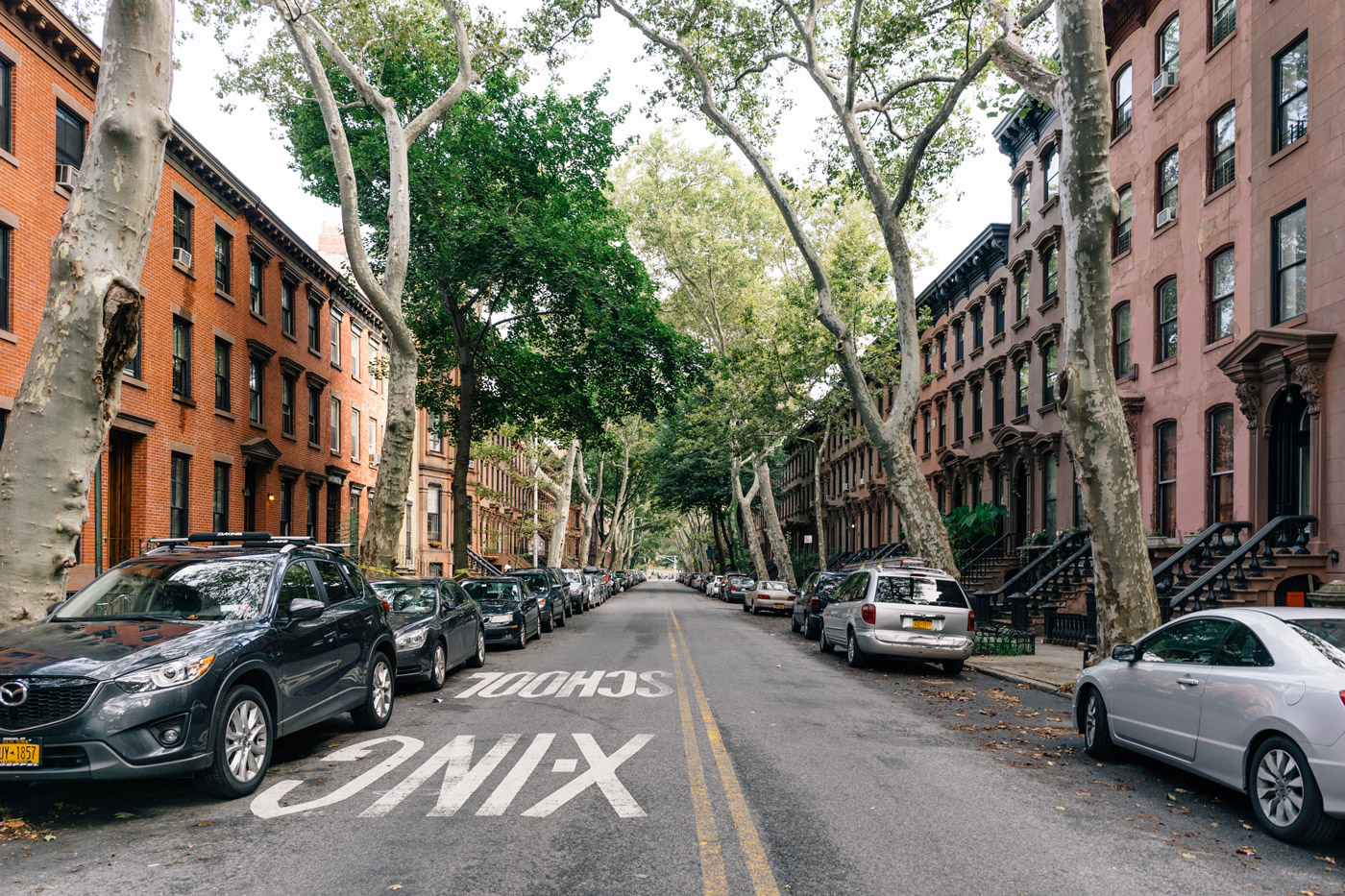 Street view of a Fort Greene neighborhood
