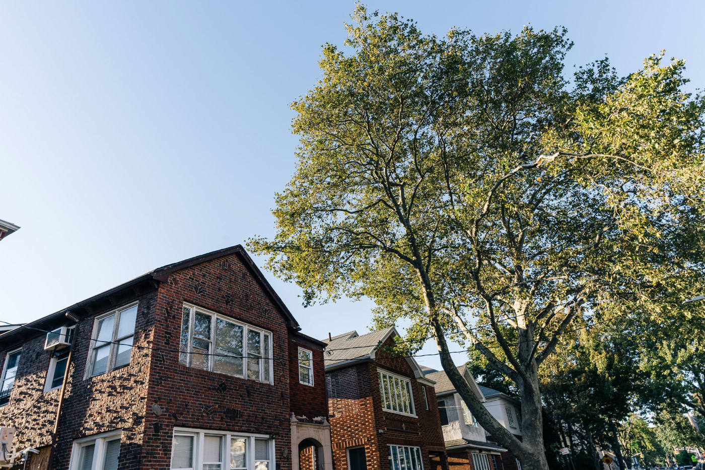 "Brick residential building with a large tree in front in Midwood"" style="