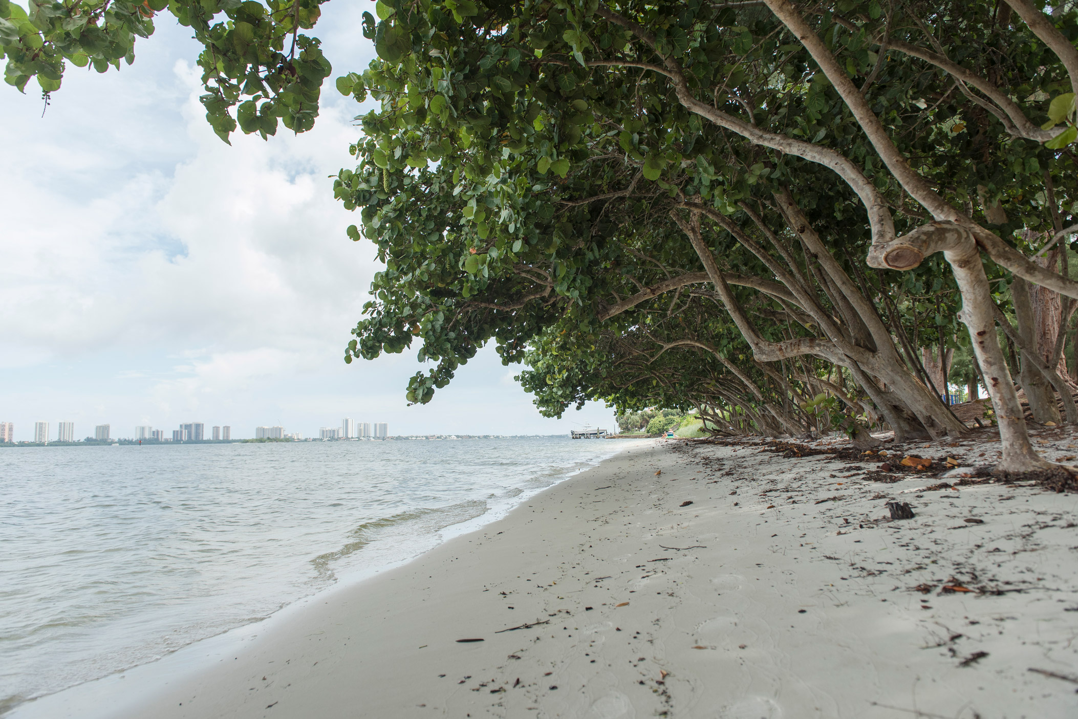 "A beautiful beach with trees providing shade in North Palm Beach"" style="